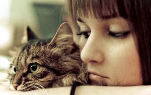garotas gostam de gatos